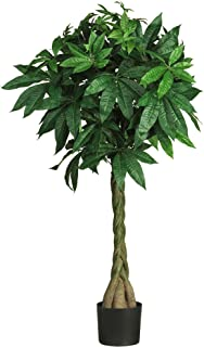 Best braided tree trunk Reviews