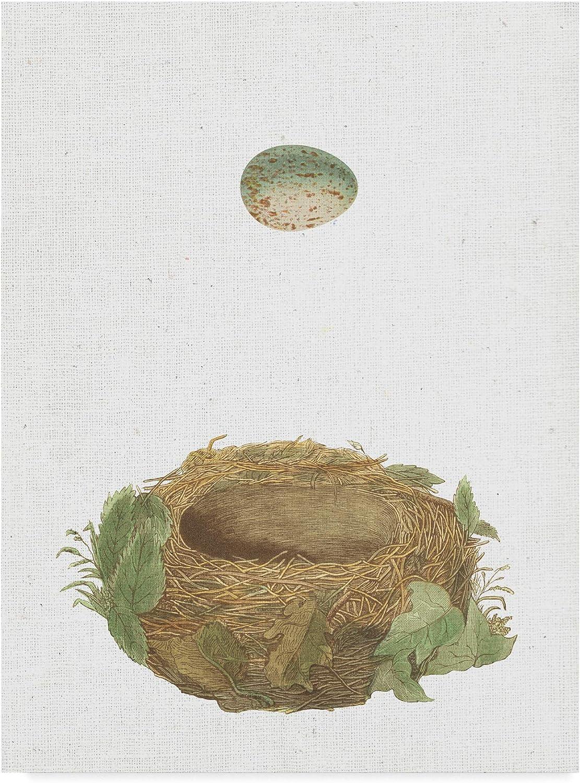Trademark Fine Art Spring Nest IV Art by Wild Apple Portfolio, 14x19