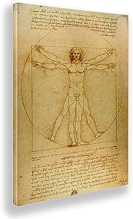 Giallobus - Pinturas - Leonardo Da Vinci - Hombre de Vitruvio - Lienzo - 50x70 - Listo para Colgar - Cuadros Modernos para...