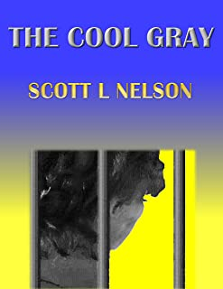 The Cool Gray (English Edition)