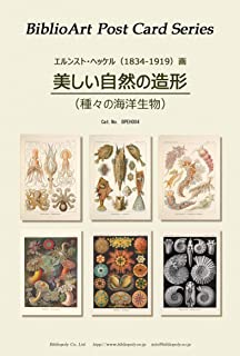 BiblioArt Post Card Series E.ヘッケル『美しい自然の造形(種々の海洋生物)』 6枚セット(解説付き)