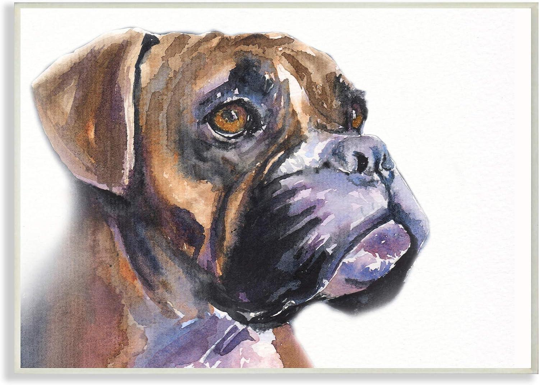 Stupell Industries Cute Boxer Dog Pet Portrait 2021 model Minimal De Brown Recommendation