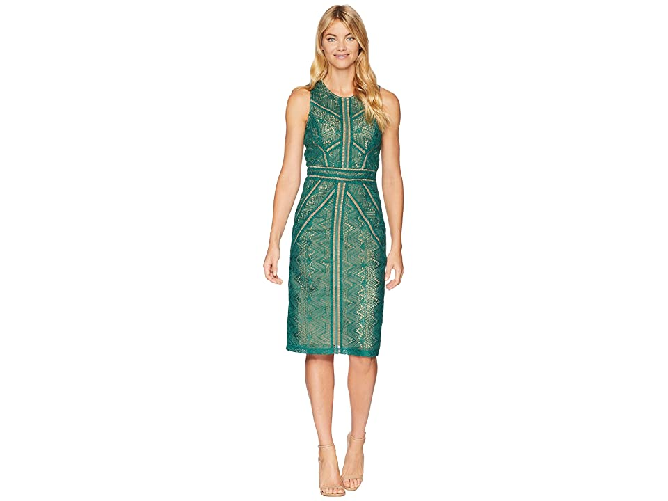 Bardot Eve Lace Dress (Wild Green) Women