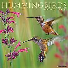 Hummingbirds 2021 Wall Calendar PDF
