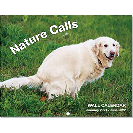 """2021-2022 Calendar - 2021-2022 Wall Calendar, Gag Gifts with Thick Paper, 11"""" x 17"""" (Open), Jan. 2021 - Jun. 2022 - Meadow Dogs, Best for White Elephant Gag Gifts"""