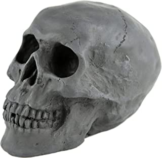 Best wood skulls for fire pit Reviews