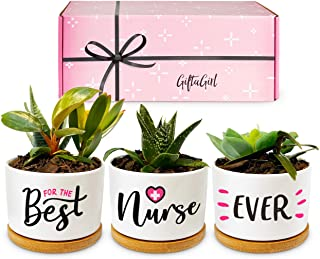 GIFTAGIRL Popular Nurse Gifts for Women - Our Beautiful Best Nurse Ever Succulent Pots make Ideal Gifts for Nurses Female ...