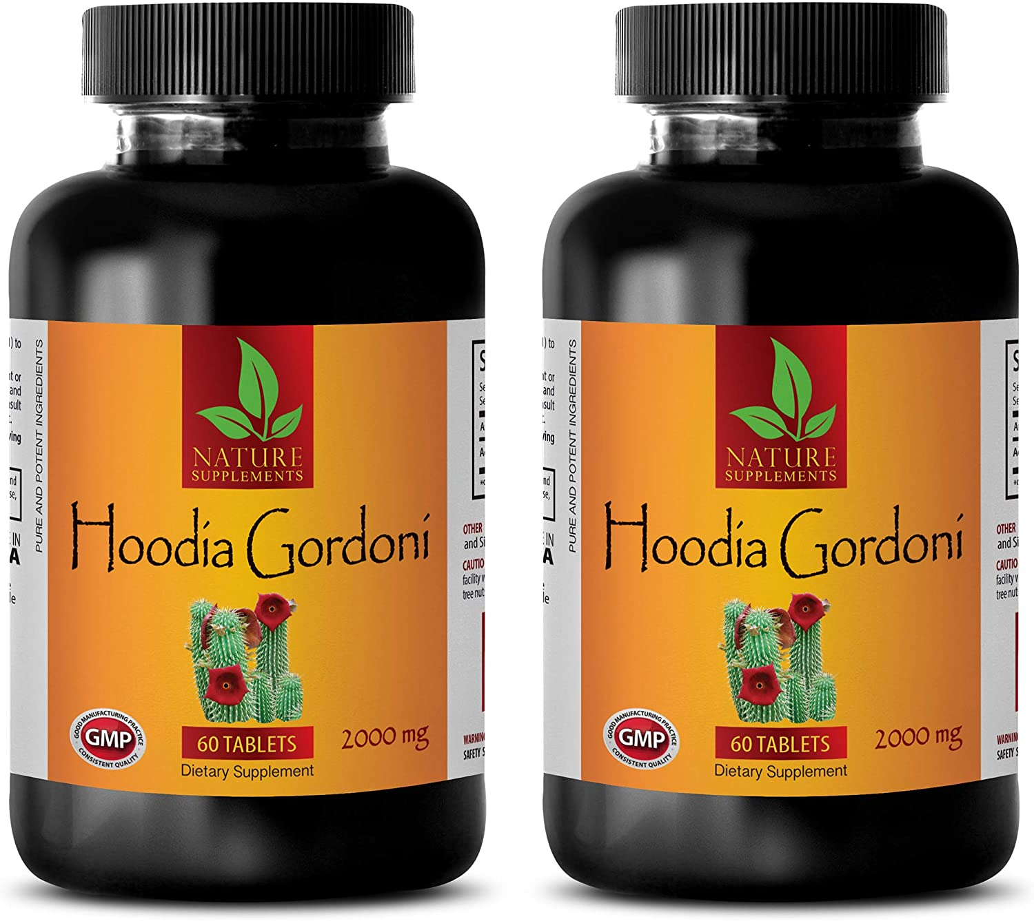 Weight Loss and Appetite Suppression Sales Large-scale sale results No. 1 GORDONI HOODIA - Supplement