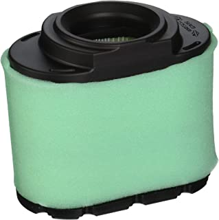 Briggs & Stratton 792105 Extended Life Series Air Filter Cartridge