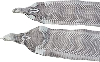 Snake Skin Asia Spitting Cobra Snakeskin with Head Hide Leather Natural