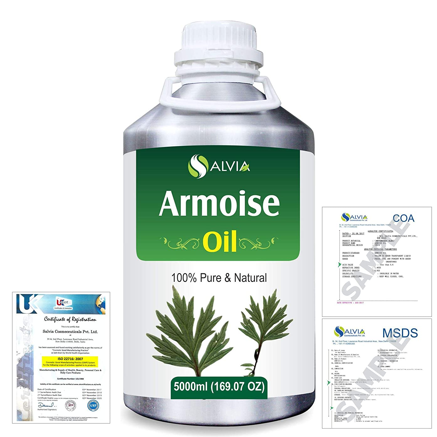 お茶ブリーフケースラリーベルモントArmoise (Artimisia alba) 100% Natural Pure Essential Oil 5000ml/169fl.oz.