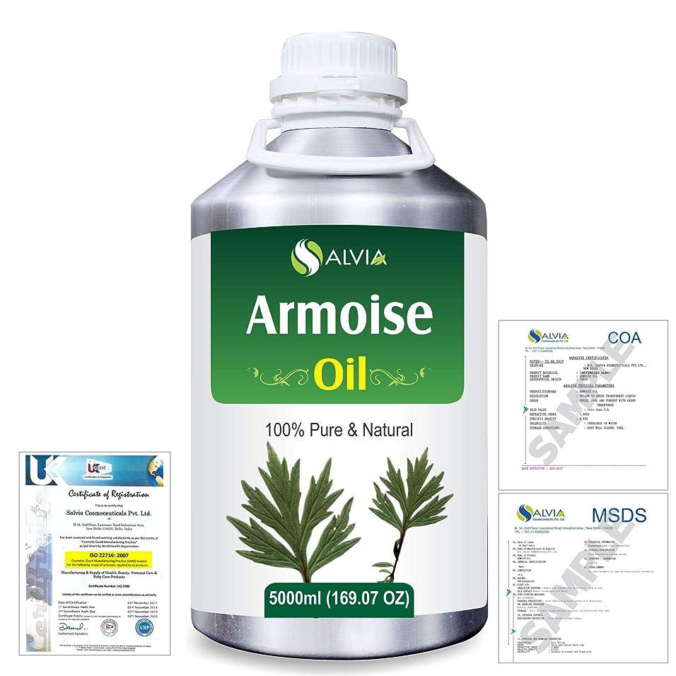 慰め架空の平方Armoise (Artimisia alba) 100% Natural Pure Essential Oil 5000ml/169fl.oz.