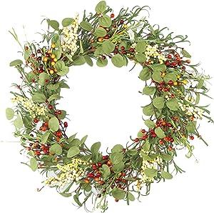 emlyn Eucalyptus Daisy Polyester Wreath for Front Door … (Spring Berry)