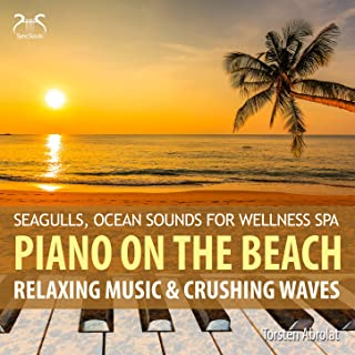 Piano on the Beach - Relaxing Music & Crashing Waves - Seagulls, Ocean Sounds for Wellness Spa