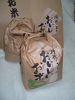 令和2年 新米 キヌムスメ 10kg 上田さんちのお米