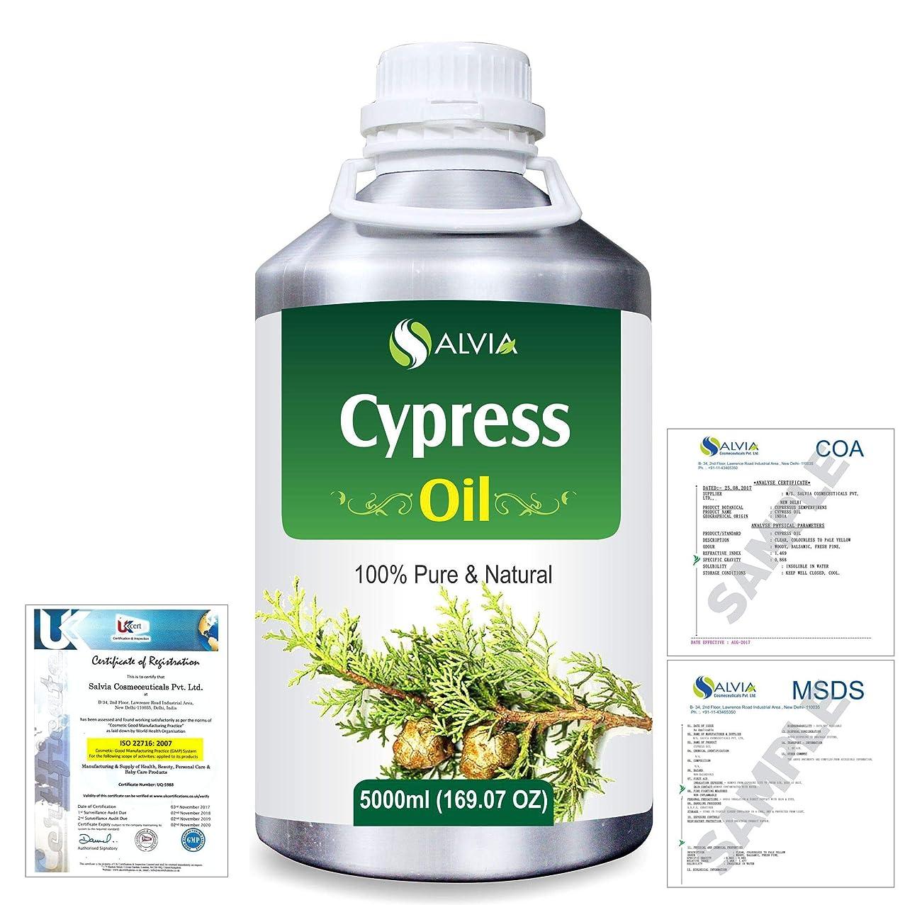 ホイール虐待今Cypress(Cupressus sempervirens) 100% Natural Pure Essential Oil 5000ml/169fl.oz.