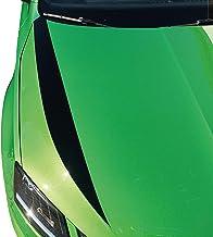 Juego de 2 láminas decorativas para el capó del coche (Oracal 751C/3M 1080/Oracal 7510 Fluorescent Premium), parachoques frontal, tuning, Styling, Car Styling, Rallye