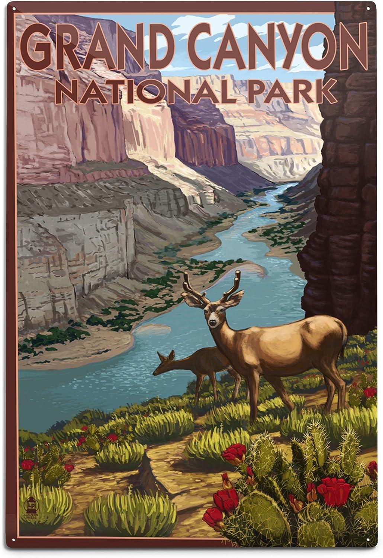 Lantern Press Direct store Grand Canyon National Colorado Ranking TOP17 Scene Park Deer