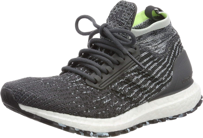Adidas Damen Ultraboost All Terrain W Laufschuhe, fonc grau Carbone Blau Glace