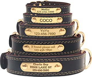 custom leather dog collars with nameplate