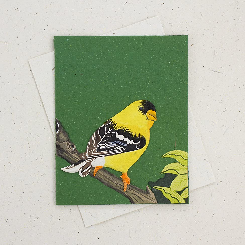 Mr. Ellie Pooh Handmade Fair Trade Paper Mache Goldfinch Embossed Elephant Dung Paper Designer Greeting Card