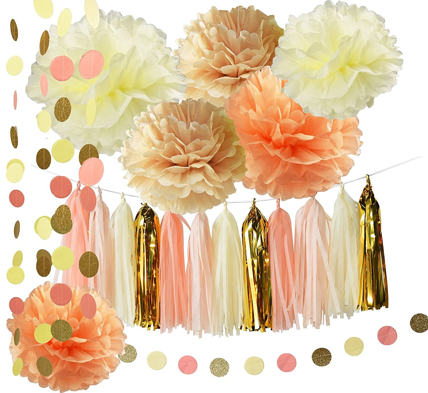 Rustic/Vintage Baby Shower Decorations Birthday Decor Tassel Garland in Cream Peach Champagne Tissue Paper Pom Pom Circle Paper Garland Girl Bridal Shower Decorations/Autumn Fall Party Decorations