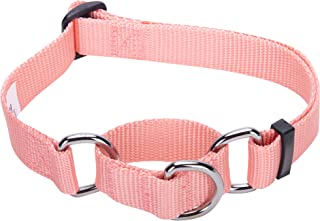 martingale dog collars for italian greyhounds