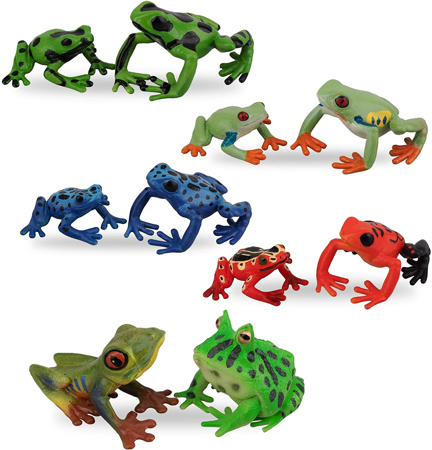 Toymany Super popular specialty store Frog Figures 2021 autumn and winter new Forest Animal Plastic Figurines 10PCS Rubb