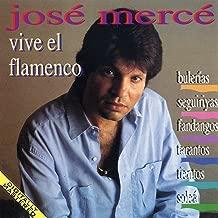 Vive El Flamenco: Bulerias - Seguiriyas - Fandangos - Tientos - Tangos