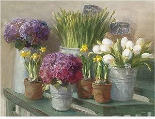 Trademark Fine Art Les Fleurs Printemps by Danhui NAI, 24x32,