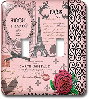 3dRose lsp_76593_2 Stylish Vintage Pink Paris Collage Art Double Toggle Switch,