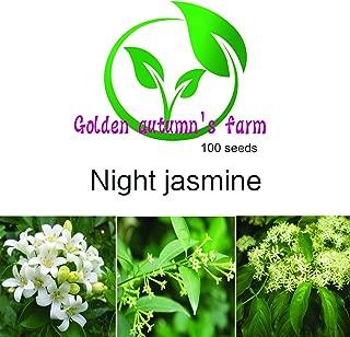 growing night blooming jasmine