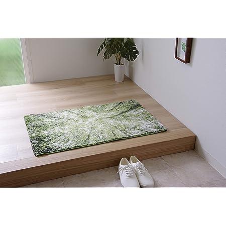 イケヒコ 玄関マット ラグマット トルコ製 ウィルトン織 ガイア 約50×80cm グリーン シンプル #2046639