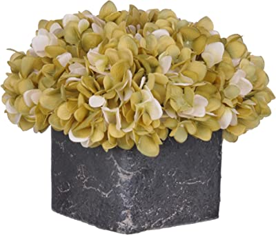 House of Silk Flowers Artificial Sage/Cream Hydrangea in Small Stone Cube