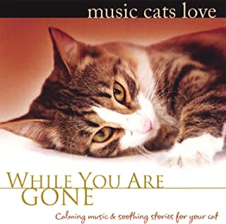 Music Cats Love: While You Are Gone