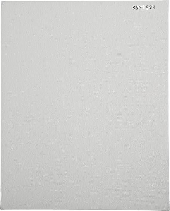3.7cm Diameter Grade A-E Fast Flow Pack of 100 Thomas AE3700 Borosilicate Glass Microfiber Filter 1 Micron
