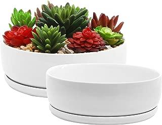 low profile ceramic planters