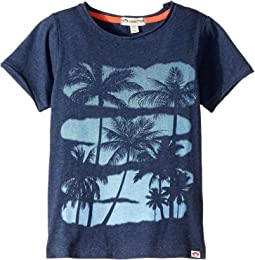 Graphic Short Sleeve Tee (Toddler/Little Kids/Big Kids)