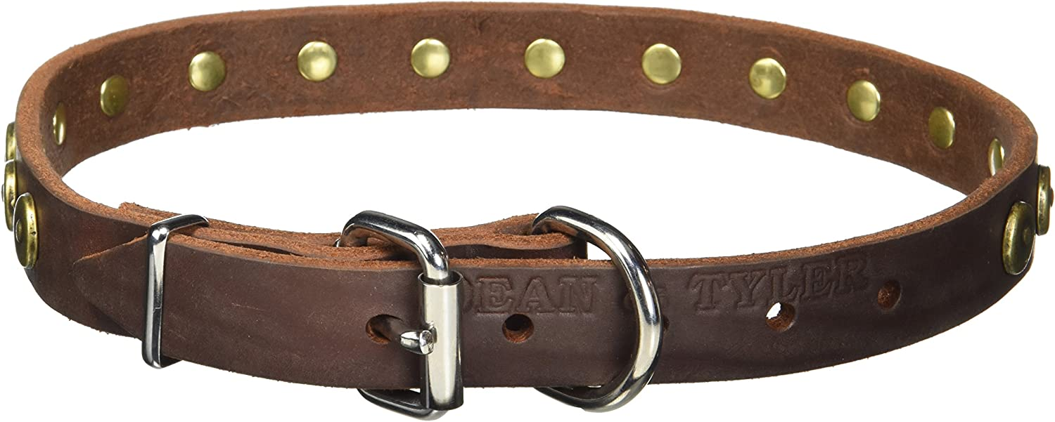 Dean and Tyler DOT MATRIX , Leather Dog Collar with Solid Brass Circles  Brown  Size 22Inch by 1Inch  Fits Neck 20Inch to 24Inch