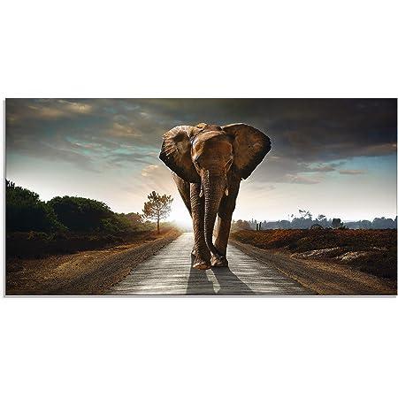 Gr/ö/ße 8 x 3,5 x 30 cm Wallario Ordnerr/ücken Sticker Elefant bei Sonnenaufgang in Afrika in Premiumqualit/ät passend f/ür 8 schmale Ordnerr/ücken