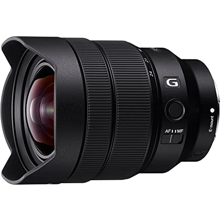 Sony SEL1224G FE 12-24mm F4 G Wide Angle Zoom Lens