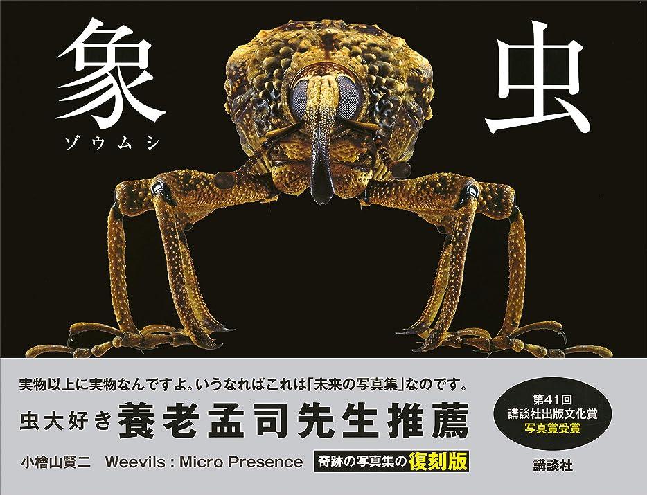 十一マニフェスト出します象虫 Weevils:Micro Presence 復刻版