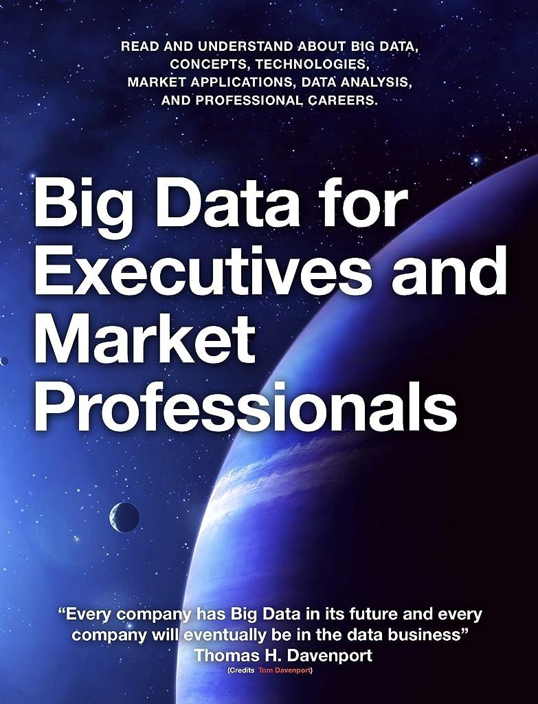 無限アート傘Big Data for Executives and Market Professionals (English Edition)