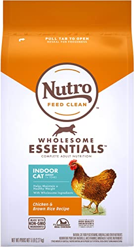 wholesale Nutro sale Wholesome Essentials Indoor and Sensitive Digestion Dry Cat popular Food, Chicken outlet online sale
