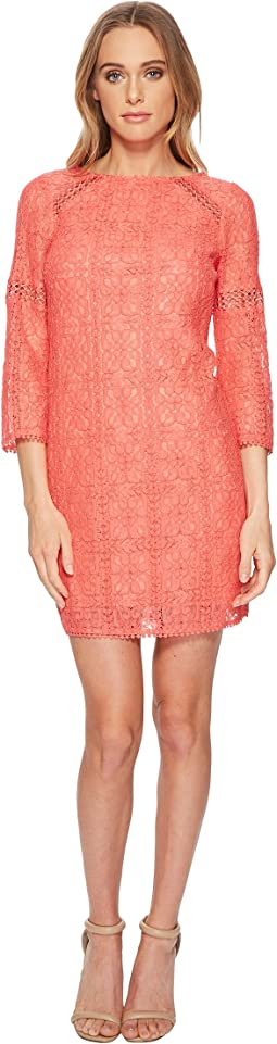 Marni Lace 3/4 Sleeve Shift