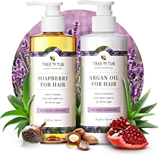 Gentle Argan Oil Shampoo & Conditioner by Tree to Tub—pH 5.5 Balanced Moisturizing Duo with Wild Soapberry & Organic Moroc...