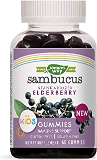 Nature's Way Sambucus Elderberry Kid's Gummies, Black Elderberry with Vitamin C and Zinc, 60 Count