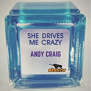 She Drives Me Crazy (Radio Mix)