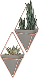 Umbra Trigg Hanging Planter, Small, Copper (Renewed)