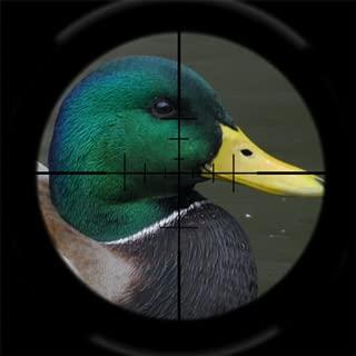 Duck Hunter 2014
